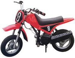 Minibike - The Bad Fads Museum