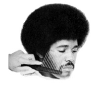 Afro Haircut - The Bad Fads Museum